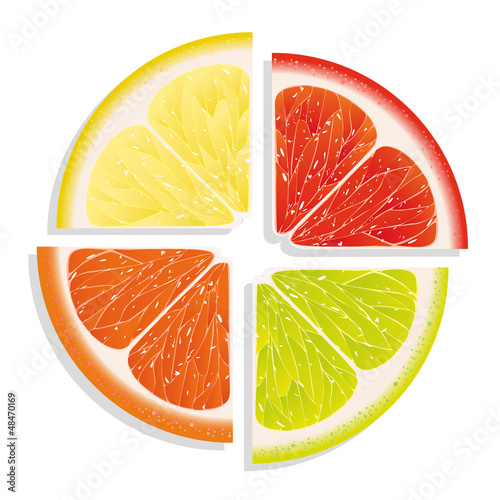 lemon, lime, grapefruit and orange on white background