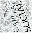 Social capital Disciplines Concept