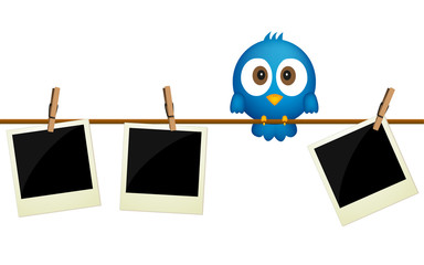 Three blank photos hanging on rope with blue bird sitting betwee