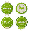 Eco Vintage Labels Bio template set. Ecology Retro design
