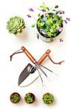 Gardening - 48474119