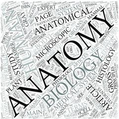 Anatomy Disciplines Concept