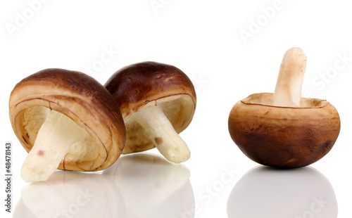 Fresh mushrooms isolated on white