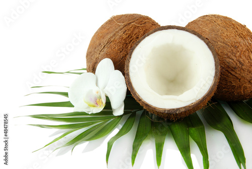 Coconuts with leaves and flower, isolated on white