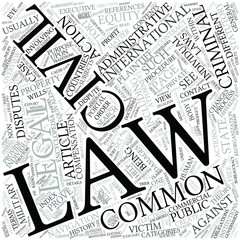 Tort law Disciplines Concept