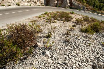 winding road in deserted landscape