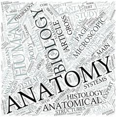 Zootomy Disciplines Concept