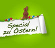 Special zu Ostern! Button, Icon