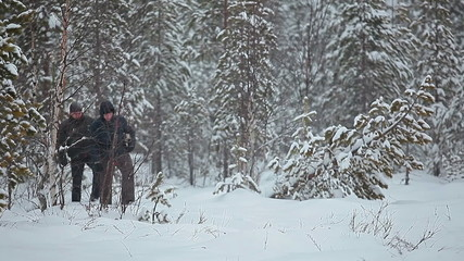 Walking in blizzard through the taiga