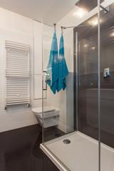 Minimalist apartment - shower