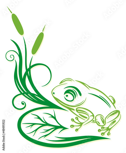 Schilf, Gräser, Frosch, filigran, floral, Ranke, frog