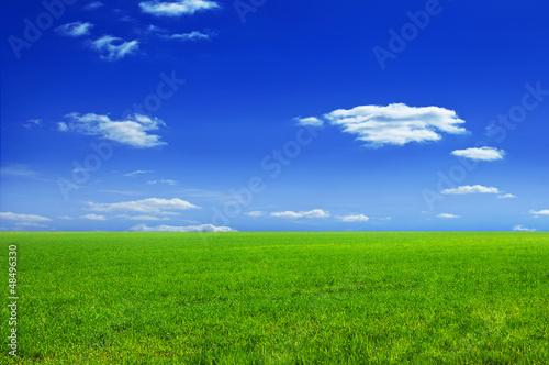 Fototapeten,gras,landschaft,wiese,hintergrund