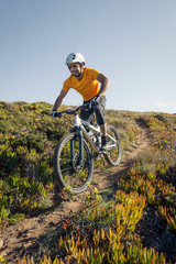 Mountain biker riding dirt trail