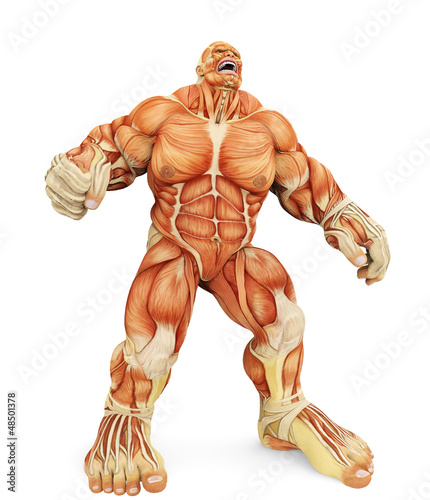 male super muscle big pain