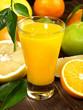 Saft von Zitrusfrüchten