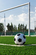 soccer ball on green grass in front of goal net