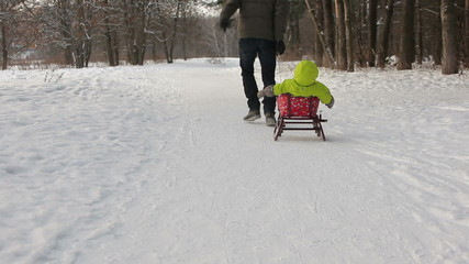 Father pulling sledge with her kid