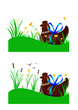 Poule chocolat - Paysage prairie et marais - Pâques
