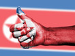 North Korean flag on thumbs up hand
