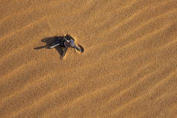 Lost Keys in Sand