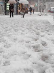 東京に積雪
