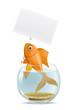 Aquarium fish blank