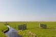 Wooden fence in landscape