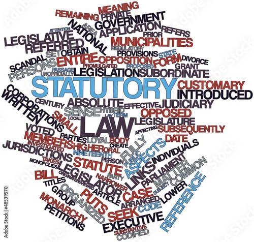 Word cloud for Statutory law