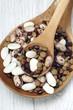 beans vegetable grain food
