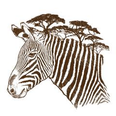Zebra with tree