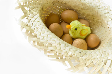 Sitting toy chick with eggs