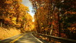 Time lapse fall drive through twisty road