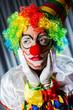 Funny clown in studio shooting