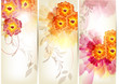 floral brochure set