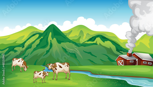 Foto op Canvas Boerderij A farm house and cows