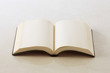 見開きの無地の本