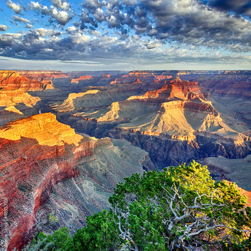 Fotobehang Canyon morning light at Grand Canyon