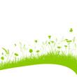 Vektor Blumenwiese Gras Grashalme Wiese Schwung