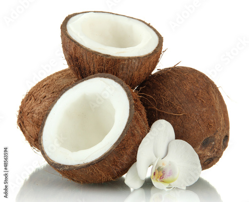 Coconuts with flower, isolated on white