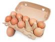 Eierkarton mit 10 Eiern