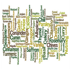 Word cloud of spice names with 10 most common enlarged