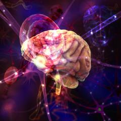 Cerebro con células y moléculas