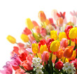 Spring awakening: floral bouquet with tulips and daffodils