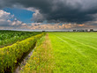 brooding summer sky above dutch agricultural landscape