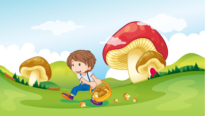 A kid and the mushrooms