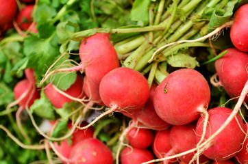 close up of radish on market stand