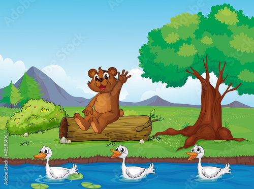 Tuinposter Rivier, meer A smiling bear and ducks