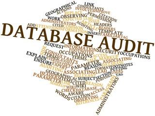 Word cloud for Database audit