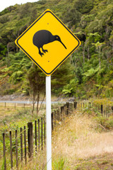 Close-up of kiwi road sign