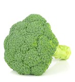 A piece of fresh broccoli on a white background